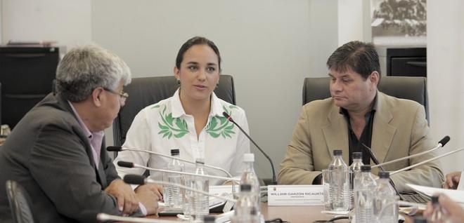 Propuestas relacionadas con parto humanizado serán tratadas en conjunto