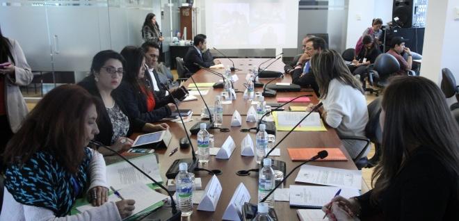 Continuó discusión de IV Libro del Código de Entidades de Seguridad Ciudadana