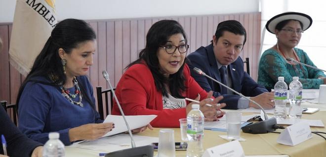 Comisión Ocasional Aampetra. Foto - Archivo