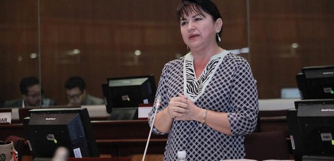 Asambleísta Gina Godoy, integrante de la Comisión de Justicia y Estructura del Estado. Foto - Archivo