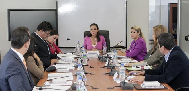 La Comisión de Justicia definió prioridades para los primeros meses de gestión
