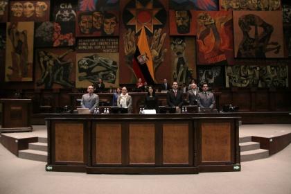 Ejecutivo propone incentivos para la  forestación y reforestación