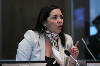 Asambleísta Lídice Larrea Foto - Archivo