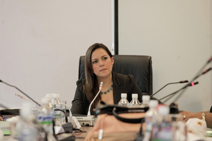 Asambleísta Johanna Cedeño, presidenta de la Comisión de Participación Ciudadana. Foto - Archivo