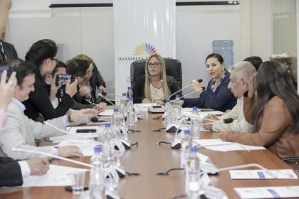 Marisol Peñafiel expuso sus puntos de vista acerca del proyecto de ley.