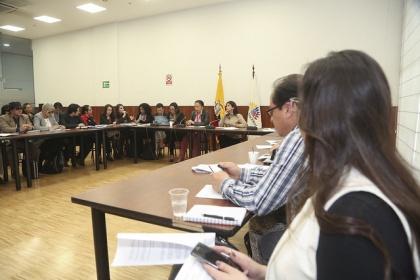 Ximena Peña, reformas a Ley de Consejos de Igualdad