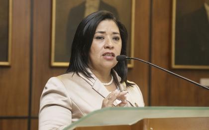La legisladora Karina Arteaga presentó el proyecto de resolución