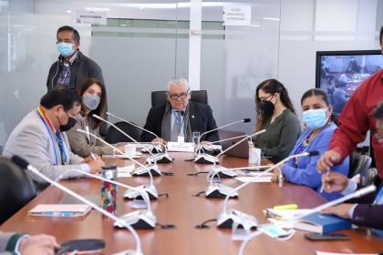 Carrera sanitaria y dictamen de la Corte Constitucional sobre la Ley Humanitaria fueron analizados en la Comisión de la Salud