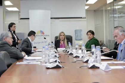 Comisión de Derechos Colectivos, Comunitarios y la Interculturalidad. Foto Archivo
