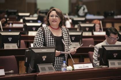 Dora Aguirre, proyecto de Ley de Movilidad Humana,