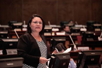 Asambleísta Dora Aguirre, vicepresidenta de la Comisión de Relaciones Internacionales- Foto - Archivo