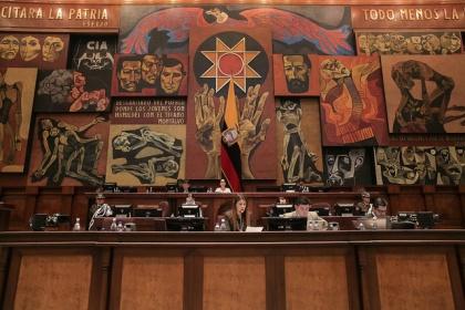 Código de Entidades de Seguridad Ciudadana: Pleno se allanó al veto del Ejecutivo