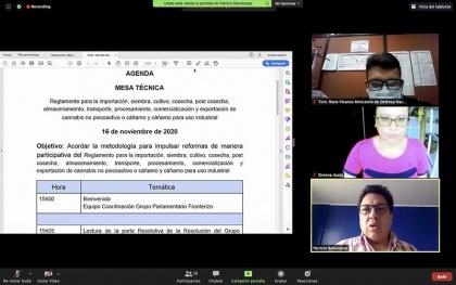 MesaTécnica, Grupo Fronterizo, Reglamento sobre el uso industrial del cáñamo