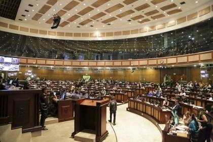 Asamblea legislará sobre registro de violadores y para frenar abusos de entidades el sistema financiero nacional