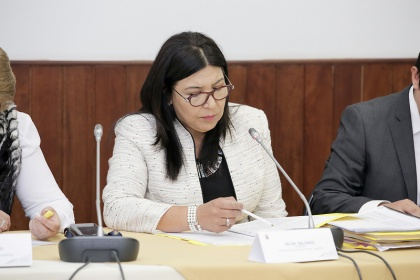 Asambleísta Silvia Salgado, presidenta de la Comisión Aampetra