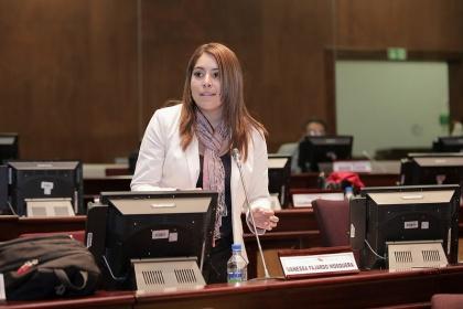 Vanesa Fajardo, proyecto de resolución, Día del Comunero,