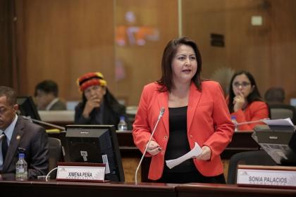 Pleno debate resolución para respaldar a ecuatorianos deportados de Estados Unidos